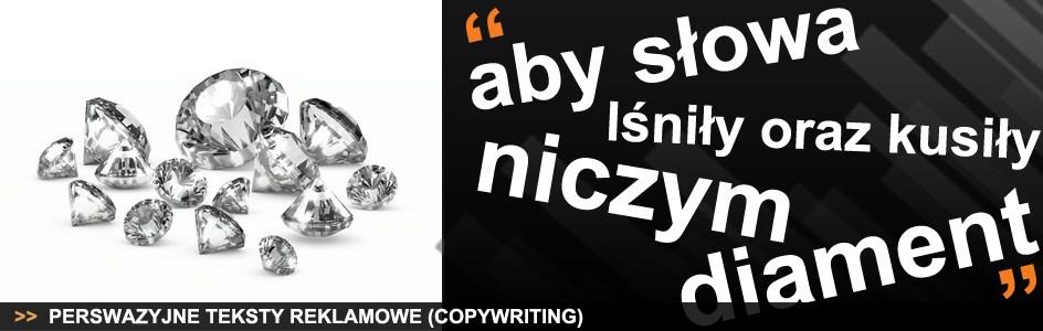 Baner reklamujący najlepszy copywriting.