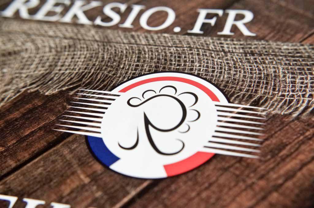 Zbliżenie na logo firmy reksio.fr oraz widoczna w powiększeniu symbolika tworzonego logo.